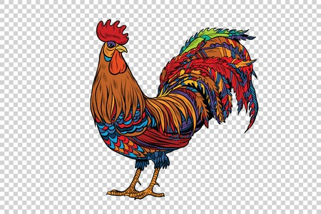gallic: Red rooster, the symbol of 2017, pop art retro vector. Chinese horoscope. Farm animal. Transparent checkered background Stock Photo
