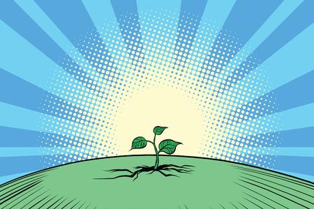 エコロジー自然緑の芽します。  イラスト・ベクター素材