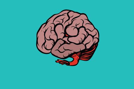 The human brain vector illustration. Comic book cartoon pop art retro color vector illustration hand drawn Stock Vector - 78444432