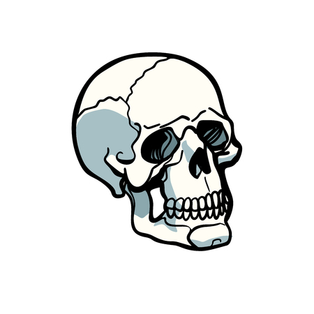 人間の頭蓋骨は白い背景に隔離された。漫画漫画ポップアートレトロイラストベクトル