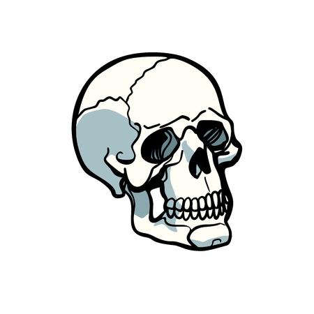 인간의 두개골 흰색 배경에 고립입니다. 만화 만화 팝 아트 복고풍 일러스트 벡터 일러스트