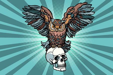 Owl and human skull illustration Illustration