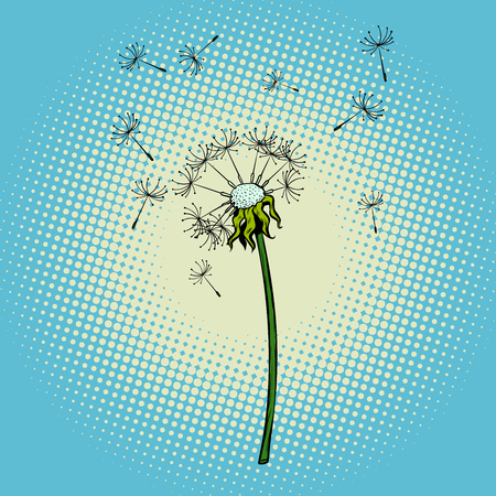 dandelion flower fluff the wind