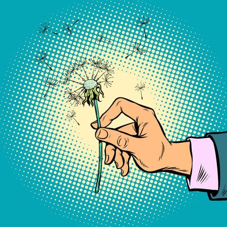 dandelion in a man hand
