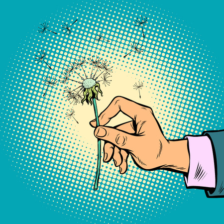 dandelion in a man hand