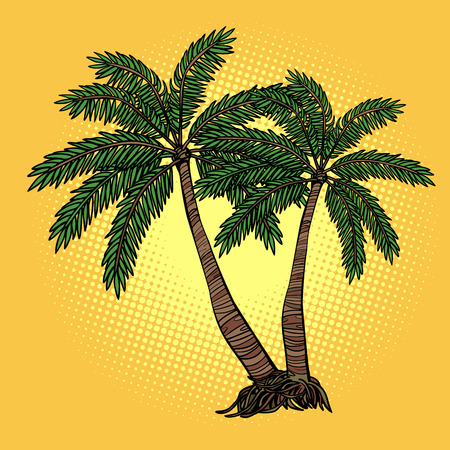 Tropical palm trees. Comic cartoon pop art retro vector illustration drawing Illustration
