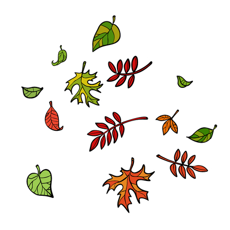 autumn leaves, nature trees. Comic cartoon pop art retro vector illustration drawing