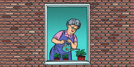 The old woman in the window watering potted flowers Ilustracja