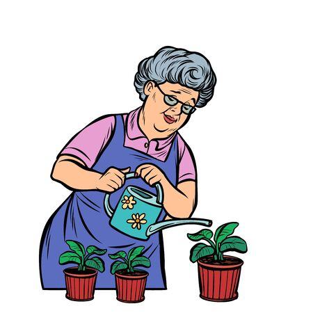 Old woman watering potted flowers. Comic cartoon pop art retro illustration drawing Illustration
