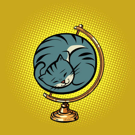 globe international the cat is curled up in a ball and sleeps
