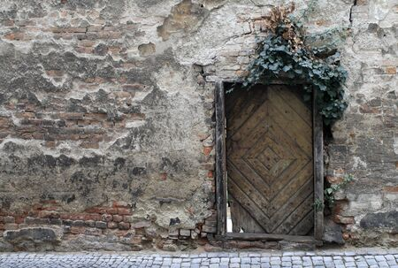 Old weathered brick wall with crumbling wooden door covered with ivy  photo