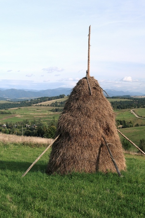 Typical haycock in the Ukrainian Carpathians