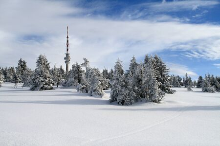 Snowy plain with a snow-covered trees below the TV tower on the top of Praded - the highest peak of Jeseniky mountains, Czech Republic.