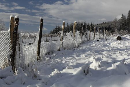 A wire fence covered with frost in a snowy forest during a sunny winter day. Stock Photo