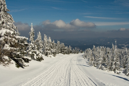 Winter mountain landscape. Snowy road in the spruce forest. Stock Photo
