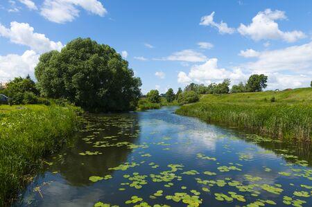 Russian summer landscape Stock Photo - 16714712
