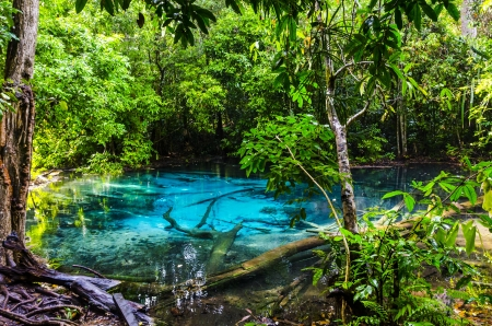 Blue spring and pond in the jungle  National Park of Thailand