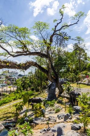 Urban Garden in Krabi Town Thailand photo