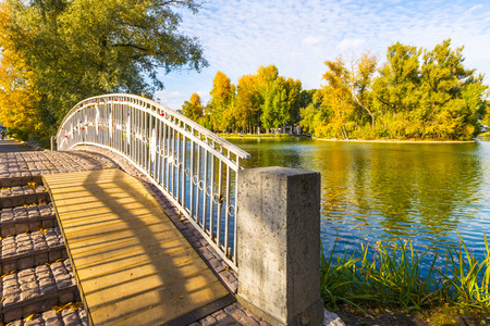 Pond in the autumn park. Moscow