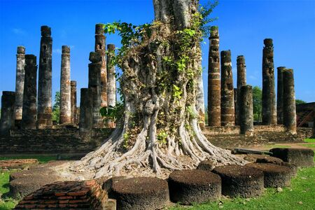 Sukhothai Historical Park scenery, Thailand. Stock Photo - 3048945