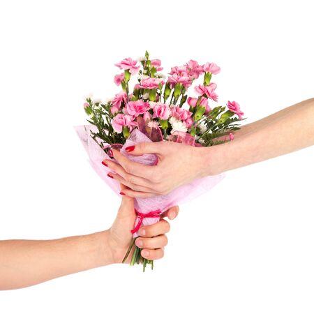 clavel: Manos femeninas, teniendo un ramo de flores claveles de mano masculina aislado en blanco