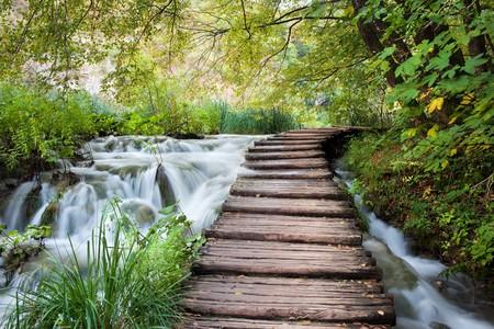 chorwacja: Drewniane ścieżki wzdłuż strumienia w lesie