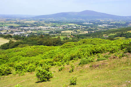 county tipperary: Scenic landscape of County Tipperary in Ireland