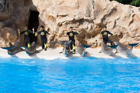 TENERIFE, CANARY ISLANDS, SPAIN - DECEMBER 26: Dolphin show at the Loro Parque dolphinarium in Tenerife, Canary Islands, Spain on December 26, 2006 Stock Photo - 11108937