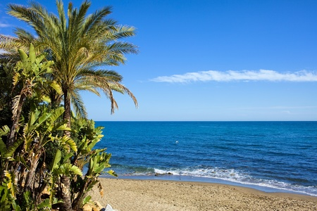 del: Picturesque tranquil scenery of a sandy beach and Mediterranean Sea in Marbella, Andalusia region, Costa del Sol, Spain