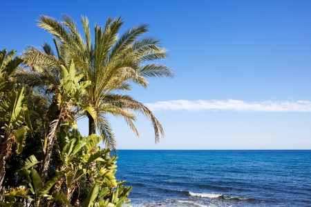 Beautiful nature scenery by the big blue sea on Costa del Sol in Marbella, Spain.