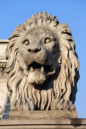 stone carving: 19th century guardian Lion sculpture on the Szechenyi Chain Bridge in Budapest, Hungary. Stock Photo