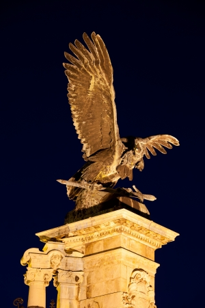 Turul Bird bronze statue from 1905 at night, located next to the Buda Castle in Budapest, Hungary. photo