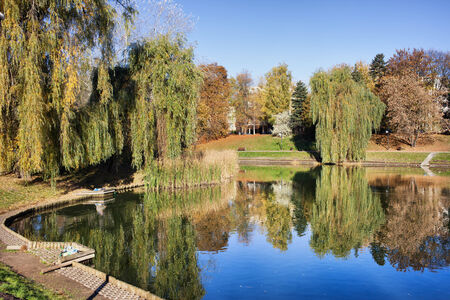 weeping willow: Lake in Moczydlo Park, city of Warsaw, Poland.