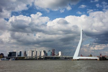 maas: City skyline of Rotterdam, Erasmus Bridge (Dutch: Erasmusbrug) over Niewe Maas river in South Holland, the Netherlands.