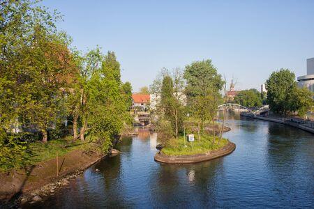 riverside tree: Brda river with islet in Bydgoszcz, Poland.