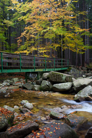 karkonosze: Bridge across Mumlava stream in autumn forest of Giant Mountains - Krkonose, Karkonosze, Sudety, Czech Republic.