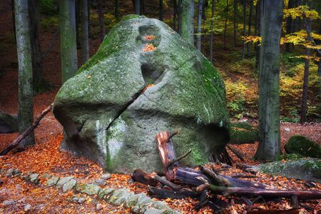curiously: Curiously looking, large mushroom shaped rock in autumn forest, Karkonosze Mountains, Poland.