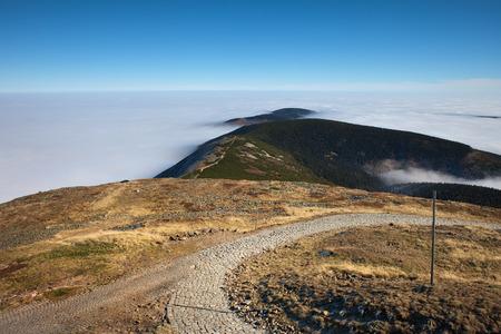 Cobbled trail in Karkonosze Mountains landscape, Sudetes (Sudeten), Poland