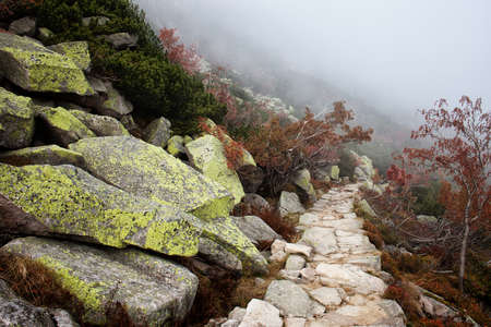 outdoor scenery: Mountain path with mist in autumn scenery of the mountains
