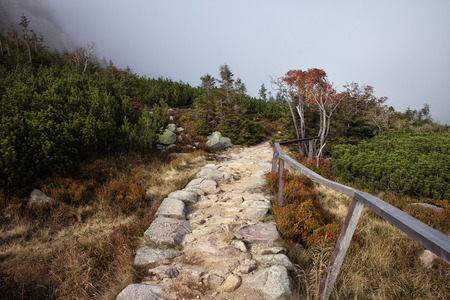 stone path: Stone path in the mountains Stock Photo