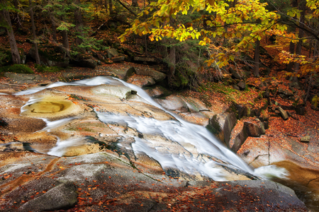 sudetes: Stream in autumn mountain forest, picturesque, tranquil scenery in Sudetes, Czech Republic