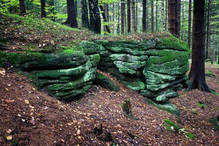 boulder: Green, mossy rocks, boulders in the forest