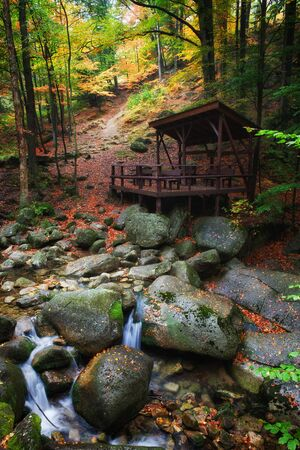 fallen tree: Tranquil scenery in autumn forest, shelter by the creek at the mountain slope