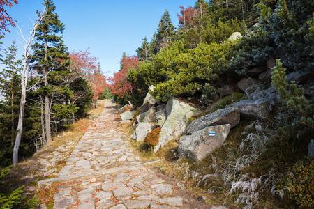 sudetes: Stone path in the mountains, trail in autumn scenery of Karkonosze Mountains, Sudetes, Poland, Europe
