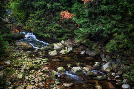 karkonosze: Lomnica River in autumn mountain forest of Karkonosze Mountains, Sudetes, Poland Stock Photo