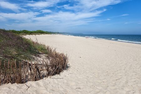ocean plants: Beach in resort town of Wladyslawowo at the Baltic Sea, popular holiday destination in Poland