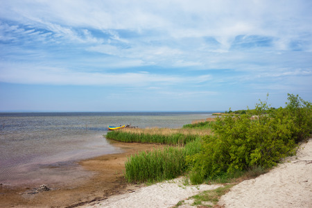 ocean plants: Puck Bay shore on Hel Peninsula in Jastarnia, Poland Stock Photo