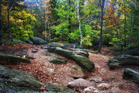 Small clearing with rocks in autumn mountain forest, Chojnik Mountain, Karkonosze Mountains, Poland Stock Photo