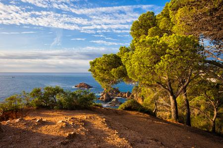 Top of a cliff view, scenic coastline of Mediterranean Sea - Costa Brava in Catalonia, Spain Stock Photo
