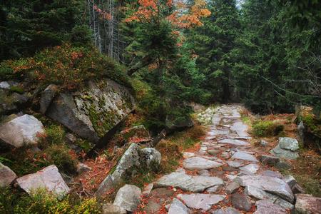 footway: Poland, Sudetes, Karkonosze Mountains, stone trail in autumn mountain forest Stock Photo